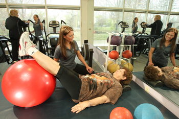 Health and Wellness Center Physical Therapist With Patient