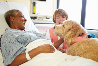 Woman in hospital bed with therapy dog