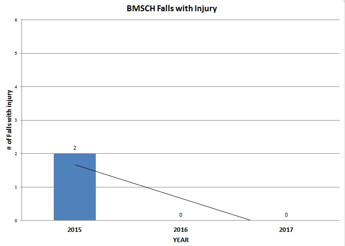 BMSCH Falls with Injury chart